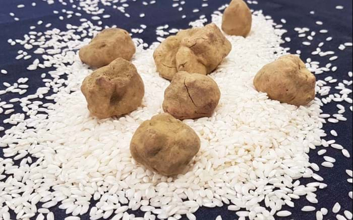 White Truffle Month